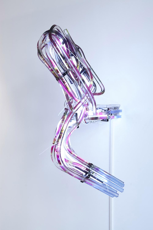Paul Créange, Mémoires (fleurs), Barre de pmma imprimées, métal, serre-câbles, néon led, contrôleur électronique.